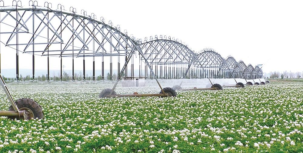 敖汉旗2016年小型农田水利设施建设项目(含李家营子片区)施工乐动体育下载竣工后